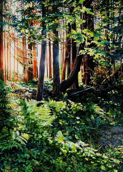 Towards Peggy Woods forest light watercolor