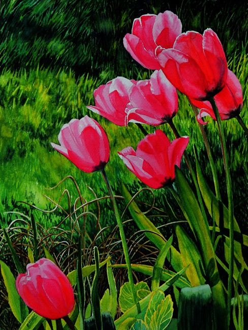 Watercolor Peggy Woods tulips