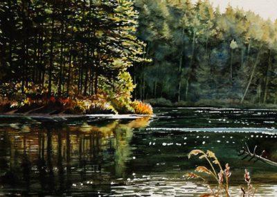 Cranberry Lake  SOLD
